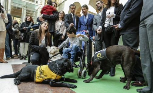 Los perros de asistencia de las personas con discapacidad podrán entrar a todos los espacios públicos