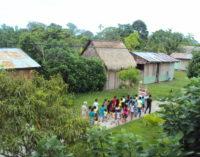 ¿Por qué se celebra un Sínodo para la Amazonía?