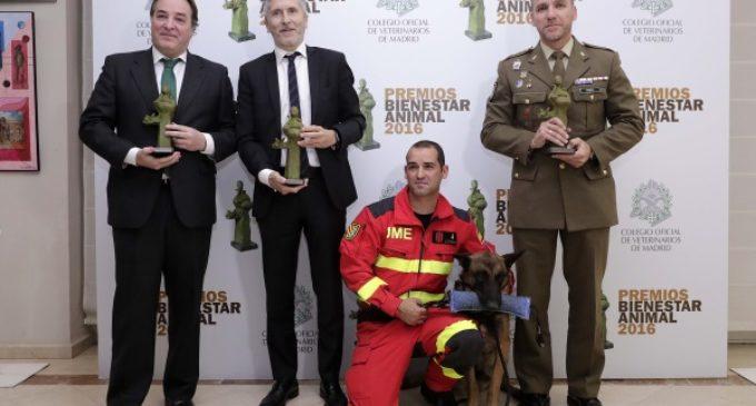 La Comunidad de Madrid recibe el Premio Bienestar Animal que otorgan los veterinarios de la región