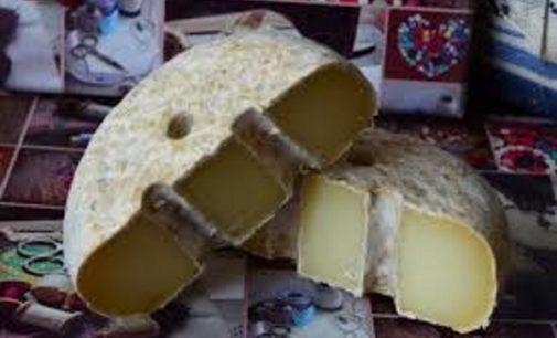 Siete quesos de la Comunidad de Madrid, reconocidos entre los mejores del mundo