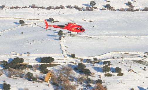 La Comunidad activa una operación por vía aérea para alimentar ganado aislado por el temporal