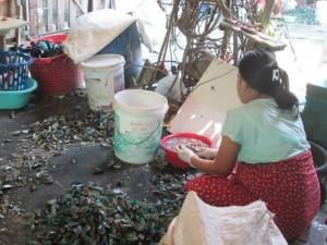 Refugiados. Refugiada birmana limpiando mejillones en Tailandia. Foto Patricia Garrido.Manos Unidas