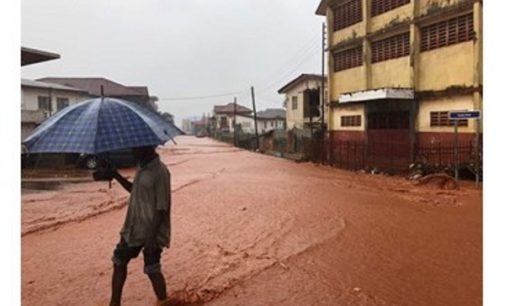 El Papa reza por los fallecidos en Sierra Leona