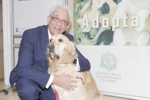 Terapia con mascotas 1