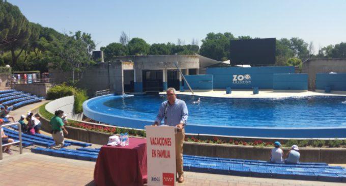 94 menores tutelados por la Comunidad de Madrid pasarán el verano con 81 familias de acogida