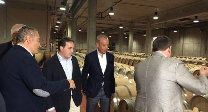 La Denominación de Origen Vinos de Madrid incrementa su producción en cerca de 80.000 botellas
