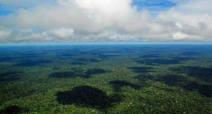 El Papa convoca un sínodo especial para la región pan amazónica