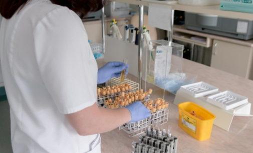 El 12 de Octubre, único centro español en el estudio de la OMS para validar un test de detección de anticuerpos frente al COVID-19