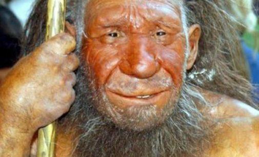 Los neandertales practicaron cuidados médicos guiados por la compasión