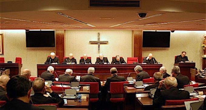 La Conferencia Episcopal Española reelige presidente al cardenal Blázquez