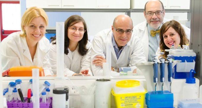 El Hospital Gregorio Marañón descubre el primer fármaco que actúa como protector del riñón